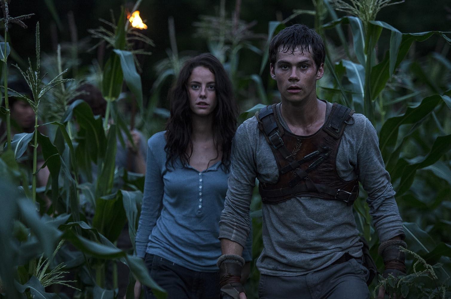 Kaya Scodelario and Dylan O'Brien in The Maze Runner (2014)