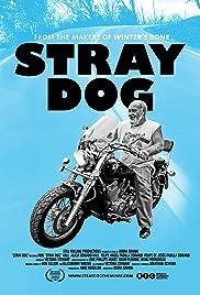 Stray Dog(2014) Poster - Movie Forum, Cast, Reviews