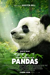 Pandasแพนด้า