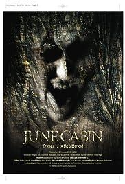 June Cabin Poster