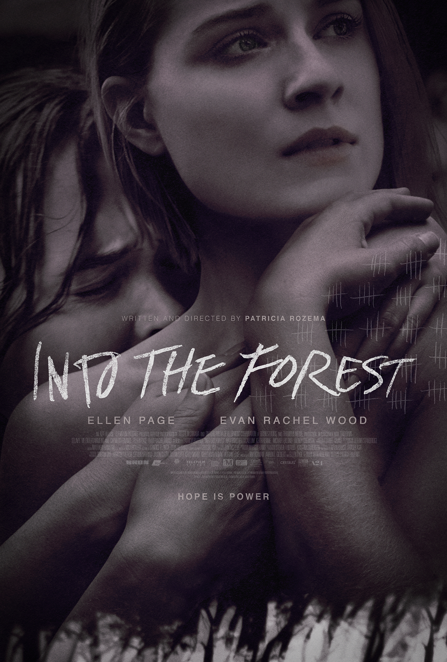 5b113de5 Into the Forest (2015) - IMDb