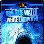 Blue Water, White Death (1971)