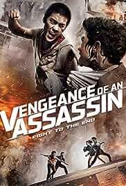 Watch Movie Vengeance Of An Assassin (2014)