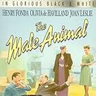 Olivia de Havilland, Henry Fonda, Eugene Pallette, and Regina Wallace in The Male Animal (1942)