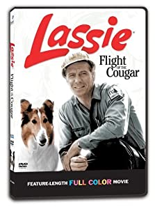 Movie pc hd download Flight of the Cougar [BDRip]