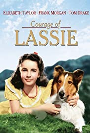 Courage of Lassie (1946) Poster - Movie Forum, Cast, Reviews