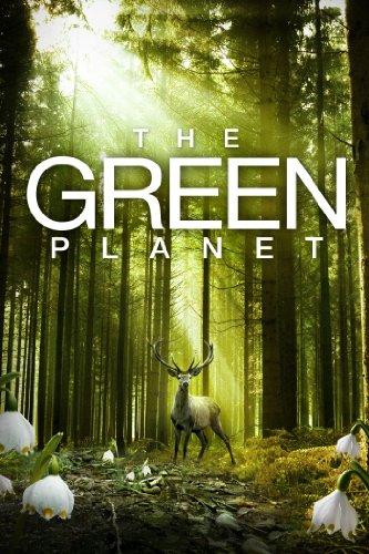 Das grüne Wunder - Unser Wald (2012) - IMDb