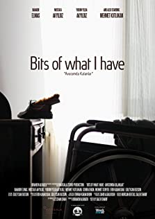 Bits of What I Have (2015)