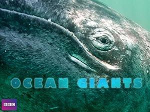 Where to stream Ocean Giants
