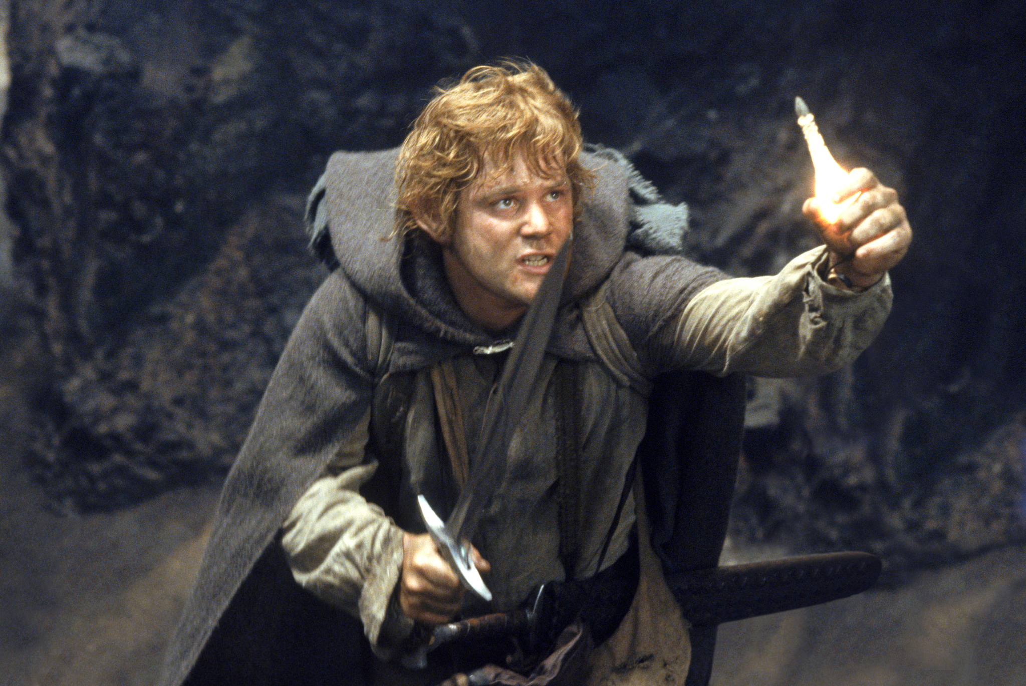 Sean Astin in The Lord of the Rings: The Return of the King (2003)