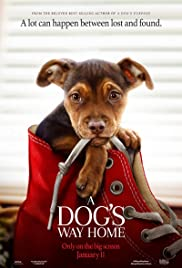 A Dog's Way Home (Mis huellas a casa) (2019) | DVDRip Latino HD GoogleDrive 1 Link