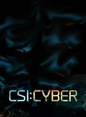 CSI: Cyber Season 2 หน่วยสืบสวนสะท้านไซเบอร์ ปี 2
