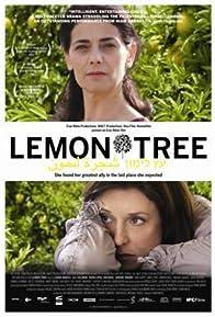 Primary photo for Lemon Tree
