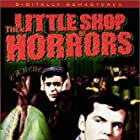 Jack Nicholson and Jonathan Haze in The Little Shop of Horrors (1960)