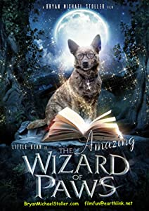 Downloadable psp movie The Amazing Wizard of Paws [1080i]
