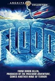 Flood(1976) Poster - Movie Forum, Cast, Reviews