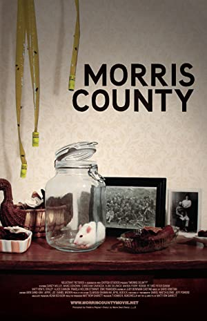 Where to stream Morris County