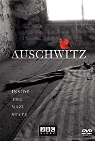 Primary photo for Auschwitz: Inside the Nazi State