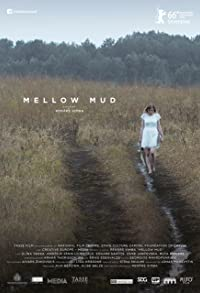 Primary photo for Mellow Mud