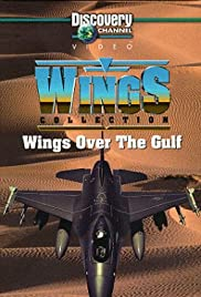 Watch mpeg4 movies Wings Over the Gulf USA [1920x1600]