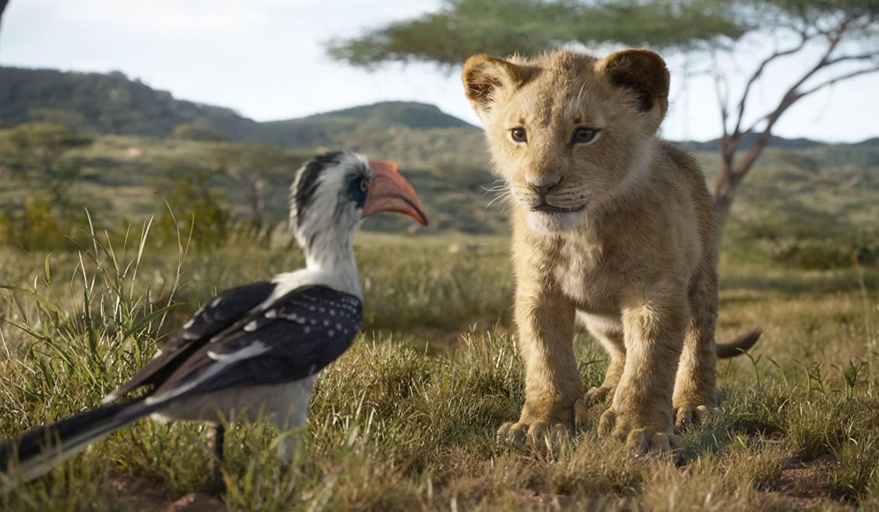 John Oliver and JD McCrary in The Lion King (2019)