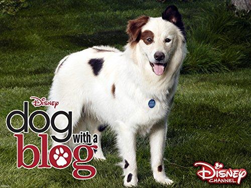 Bennett James Dog With A Blog