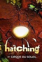 Cirque du Soleil: Hatching