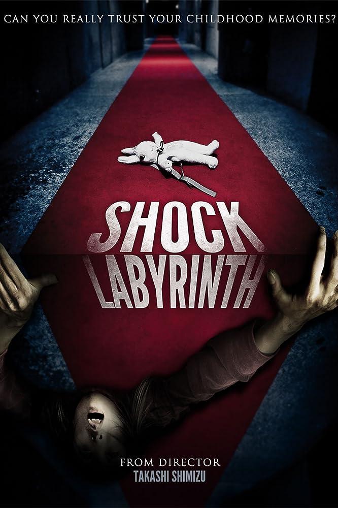Siaubo labirintas (2009)