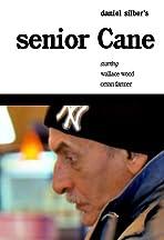 Senior Cane