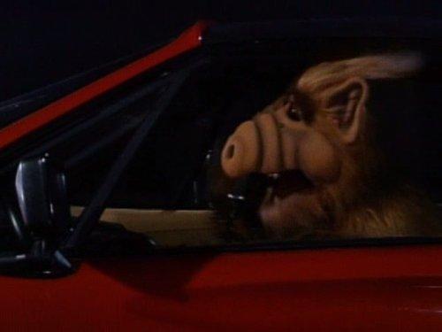 ALF 1×10 – Bebé puedes manejar mi carro