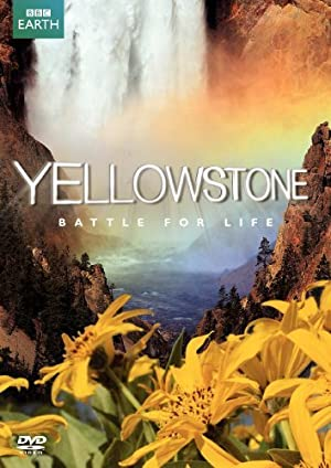 Yellowstone: Battle for Life (2009–) • FUNXD.site