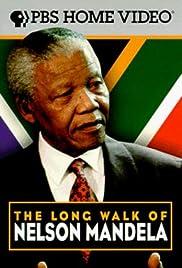 The Long Walk of Nelson Mandela Poster