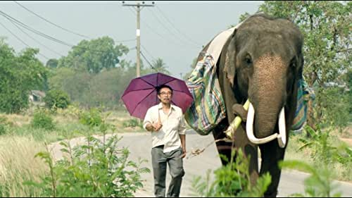 On a chance encounter, a disenchanted architect bumps into his long-lost elephant on the streets of Bangkok. Excited, he takes his elephant on a journey across Thailand, in search of the farm where they grew up together.