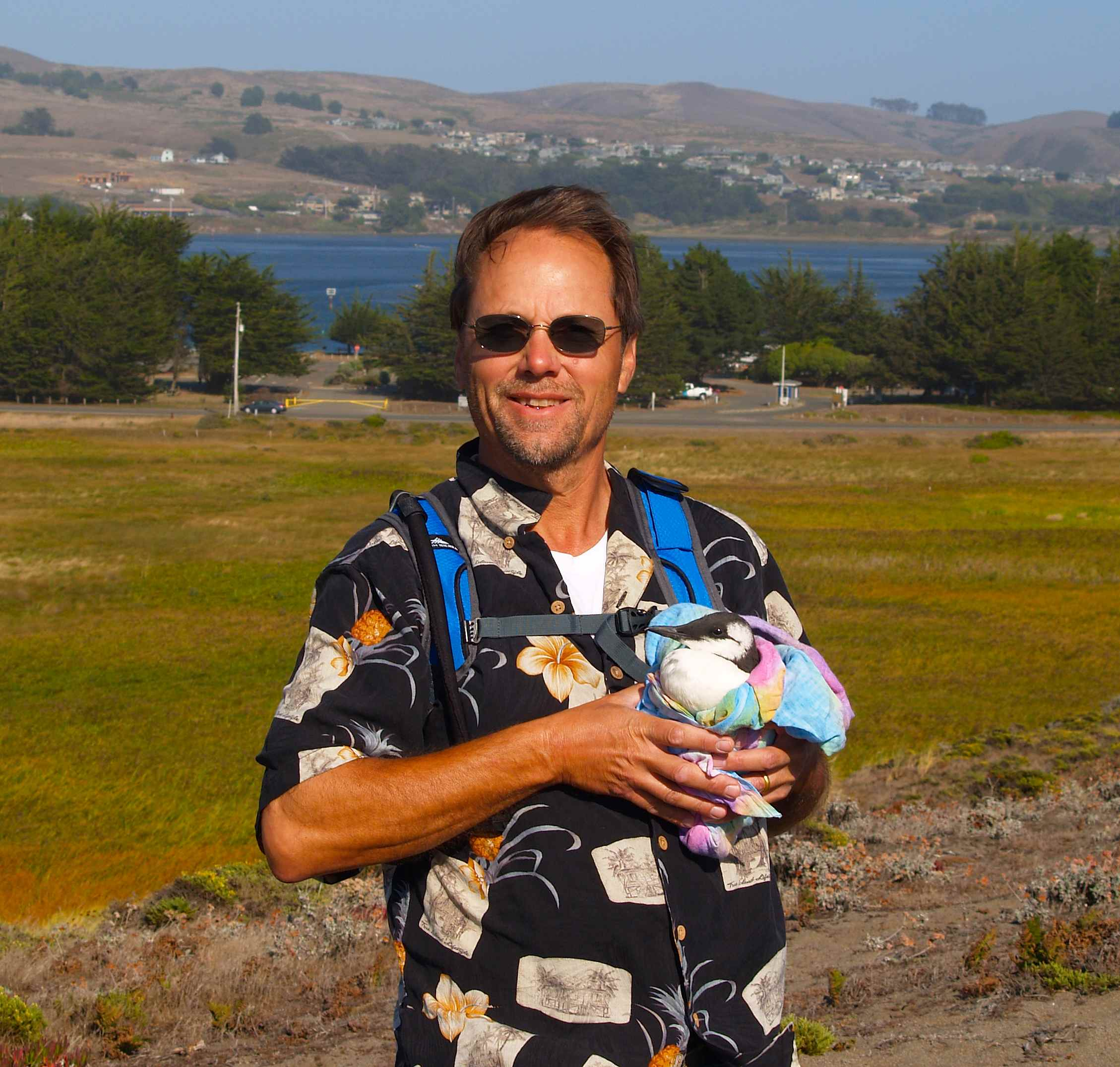 Capt. William E. Simpson on location in Bodega Bay, CA with a rescued Murre. A Murre is a sea bird that is capable of diving up to 100 meters in search of food.
