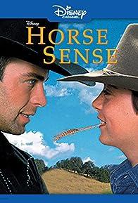 Primary photo for Horse Sense
