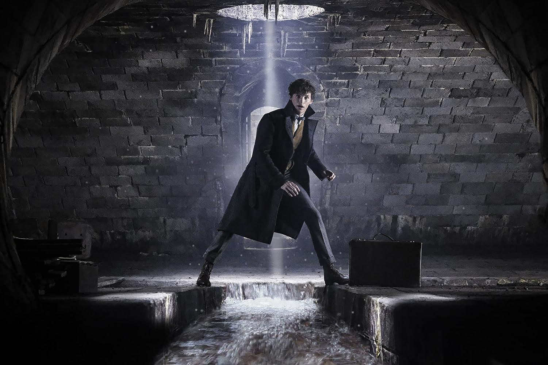 Eddie Redmayne in Fantastic Beasts: The Crimes of Grindelwald (2018)