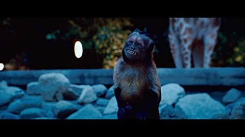 A group of zoo animals decide to break their code of silence in order to help their lovable zookeeper (James) win over the love of his life.