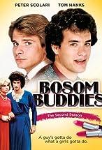 Primary image for Bosom Buddies