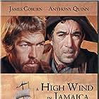 A High Wind in Jamaica (1965)