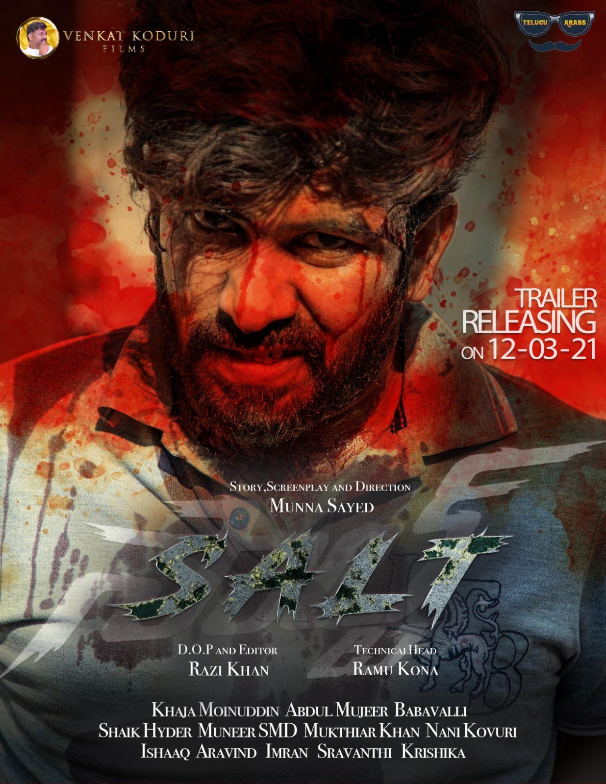 Salt (2021) Hindi Dubbad 720p HDRip 1.1GB Download
