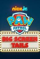 Paw Patrol: Mission Big Screen
