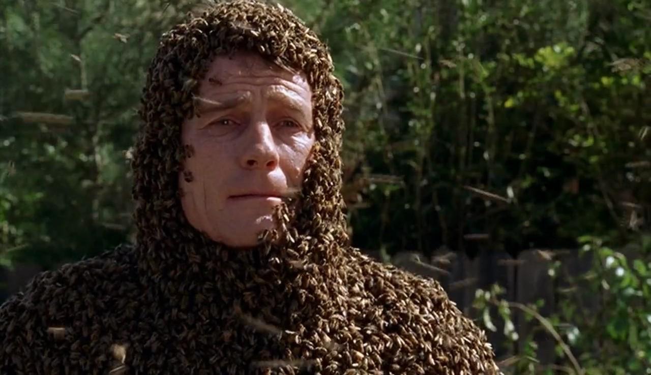 Malcolm 1×14 – Los bots y las abejas