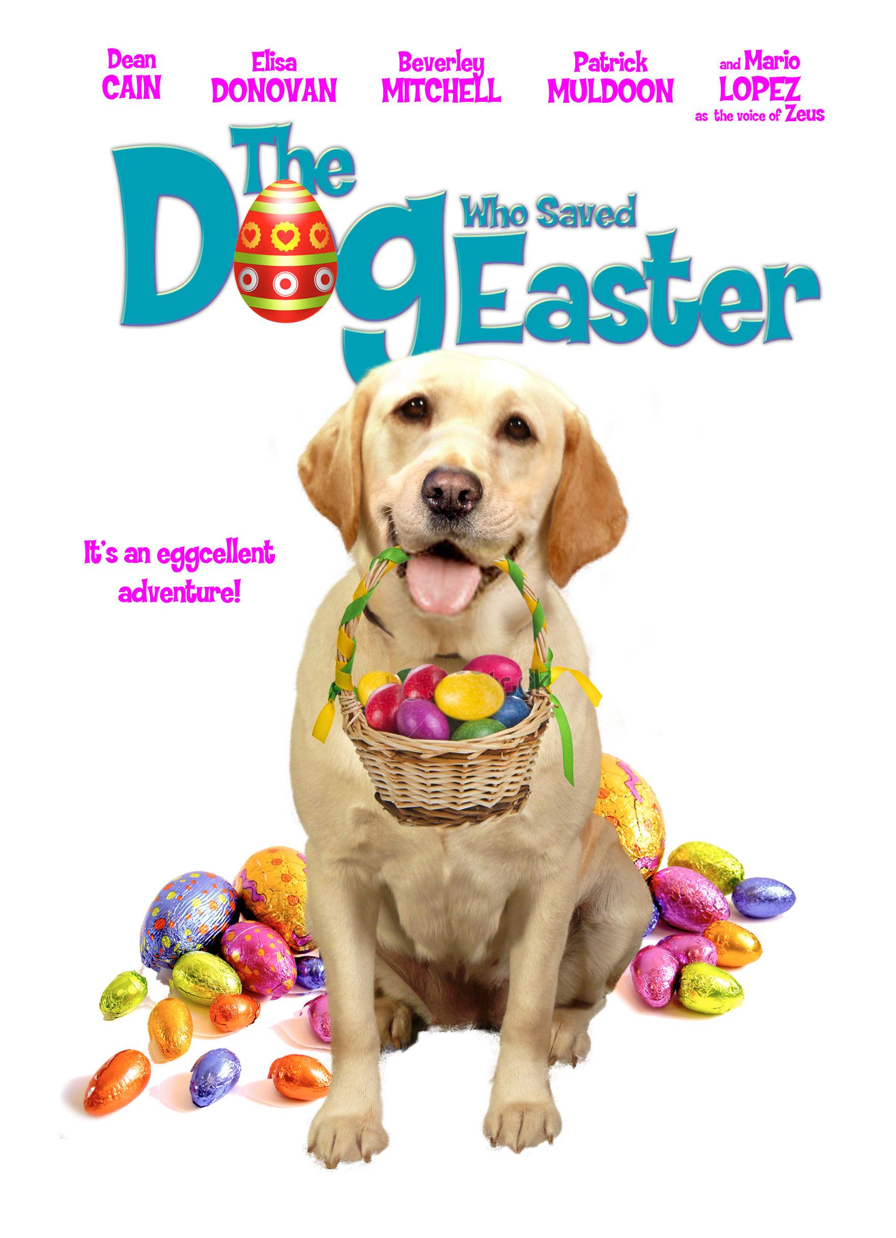 Paskalya'yı Kurtaran Köpek – The Dog Who Saved Easter izle (2014)