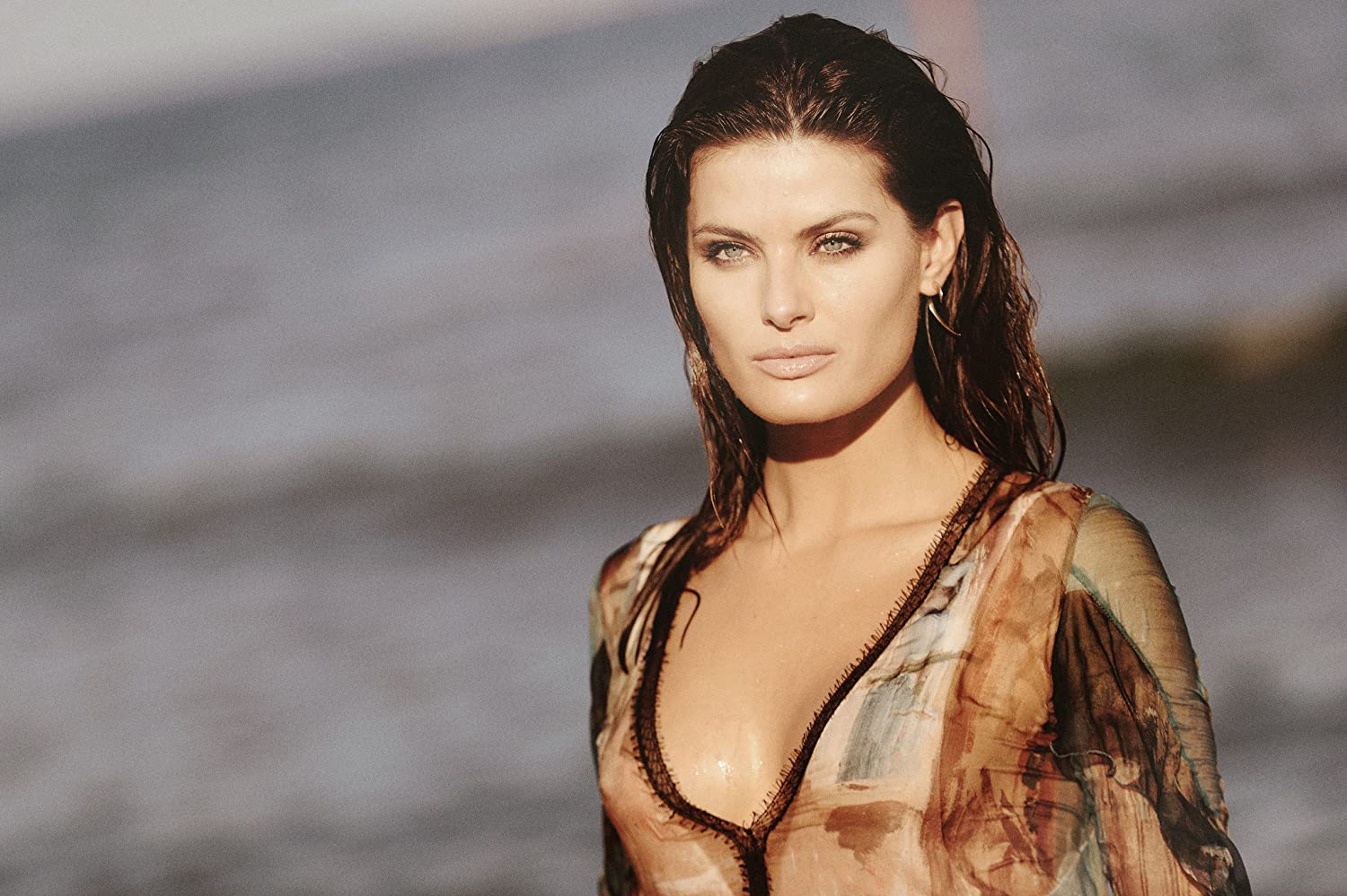 Isabeli Fontana nudes (17 photo), Topless, Leaked, Selfie, see through 2020