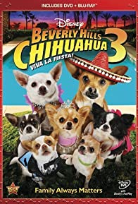 Primary photo for Beverly Hills Chihuahua 3: Viva La Fiesta!