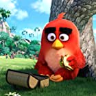 Jason Sudeikis in Angry Birds (2016)