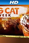 The Cat's Meow! NatGeo Wild's Big Cat Expert Introduces His Baby Bengal Tiger and Leopard Friends