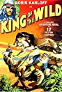 King of the Wild (1931) Poster