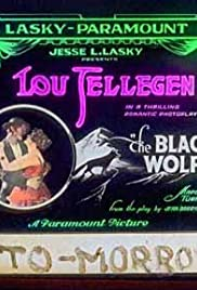 The Black Wolf Poster