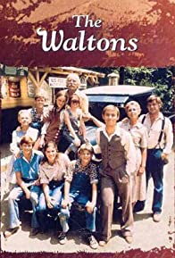 Primary photo for The Waltons